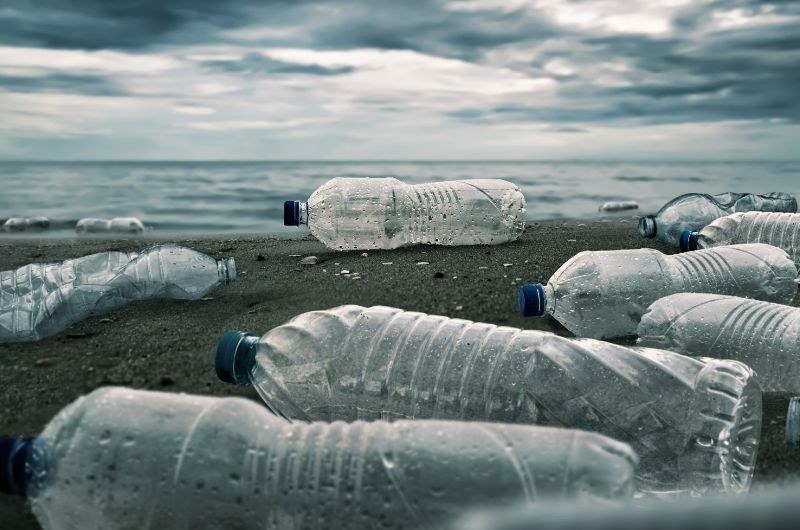 One of the major ways to have a clean carbon footprint and help the environment is to avoid using plastic bottles.