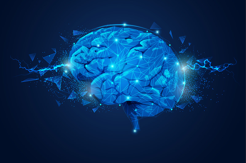 Neurogenesis mushrooms, and it's effect on your brain power.