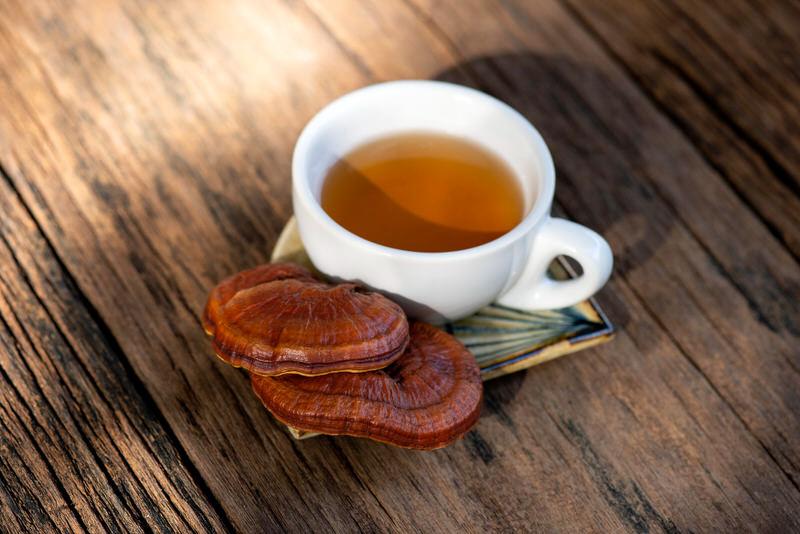 A cup of Reishi (aka Lingzhi) mushroom tea.