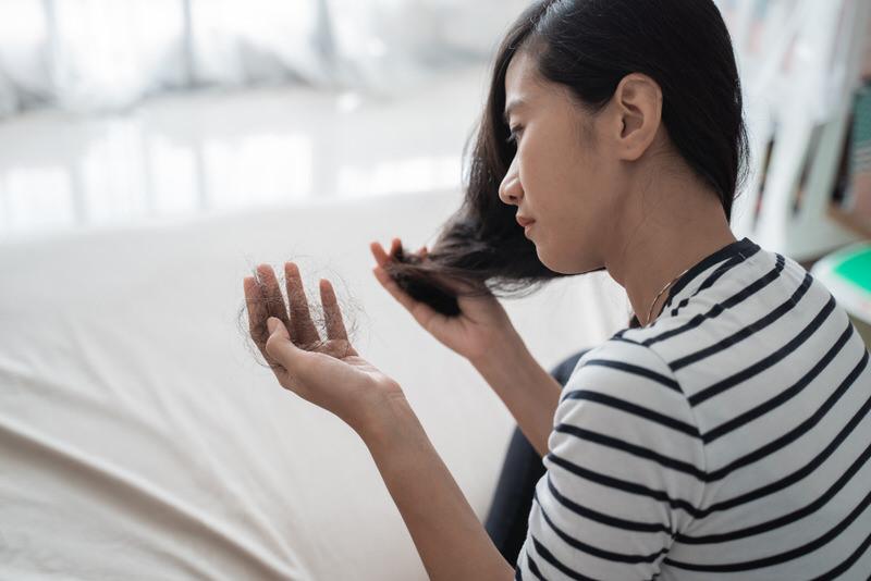 Reishi Mushroom For Hair Growth - Is It A Viable Option?