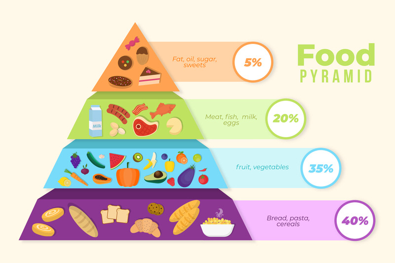 A nutritional food pyramid showing the breakdown of ideal daily food intake.